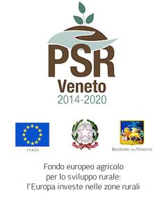 Logo PSR Veneto